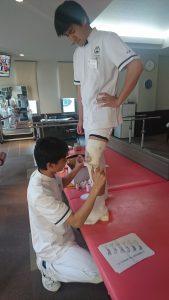 膝関節テーピング(卒前研修)