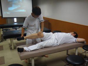卒前研修・臨床実習 膝関節の徒手検査法