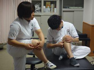 卒前研修・臨床実習 下肢の触診